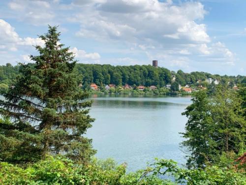 Blick vom Dom auf den See