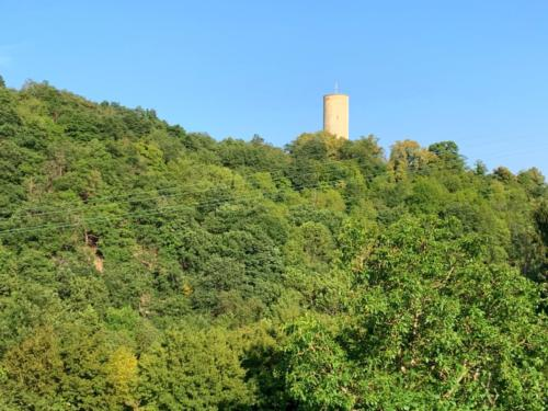 Im Rheingau...