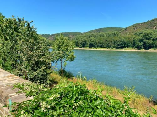 Väterchen Rhein...
