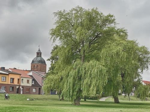 Ribnitz Hafen