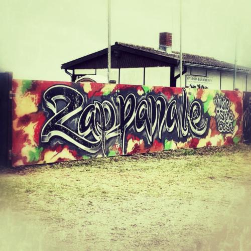 14 - Zappanale